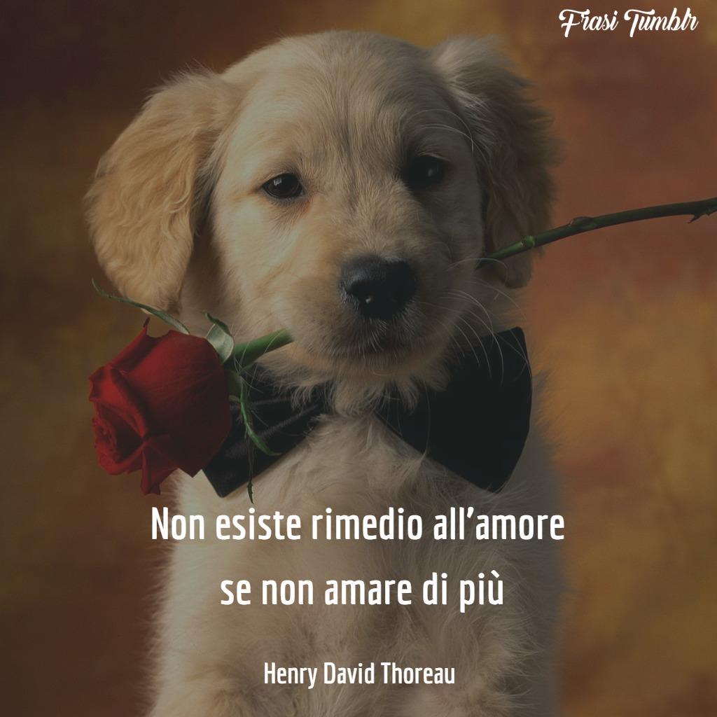 Immagini Frasi Celebri D Amore.Frasi Celebri Sull Amore Le 70 Citazioni Piu Famose E Importanti