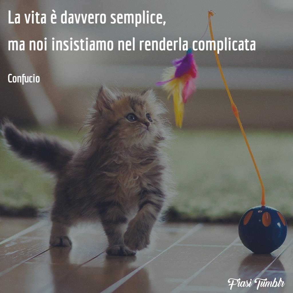 frasi-tumblr-vita-semplice-complicata