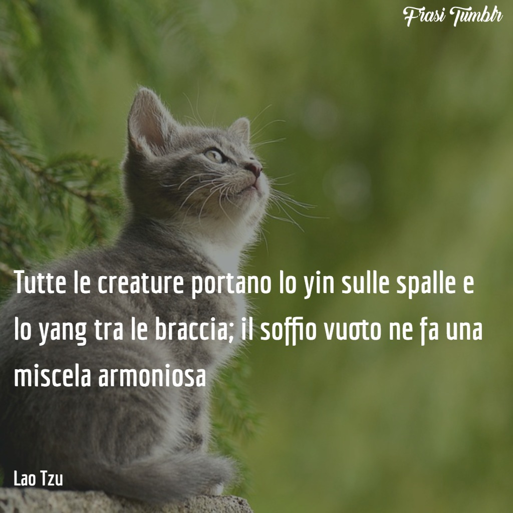 frasi-yin-yang-filosofia-creature-miscela-armoniosa