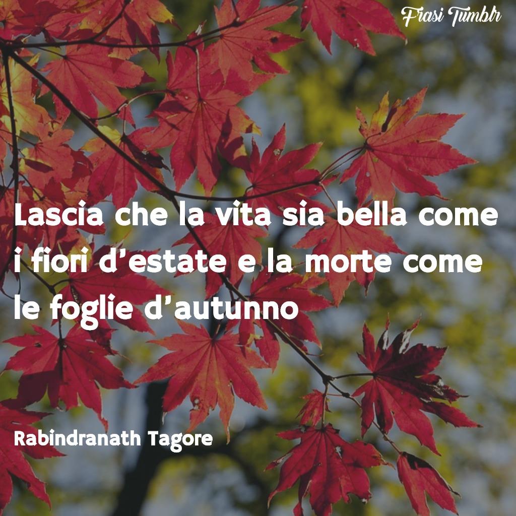 frasi-morte-zen-vita-fiori-estate-morte-foglie-autunno