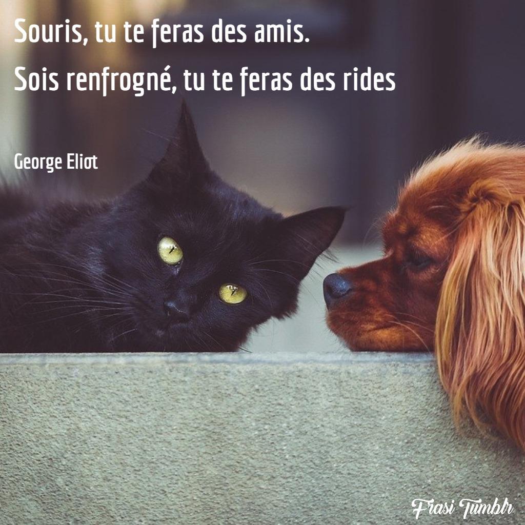 frasi-sorriso-francese-amici-rughe-sorriso