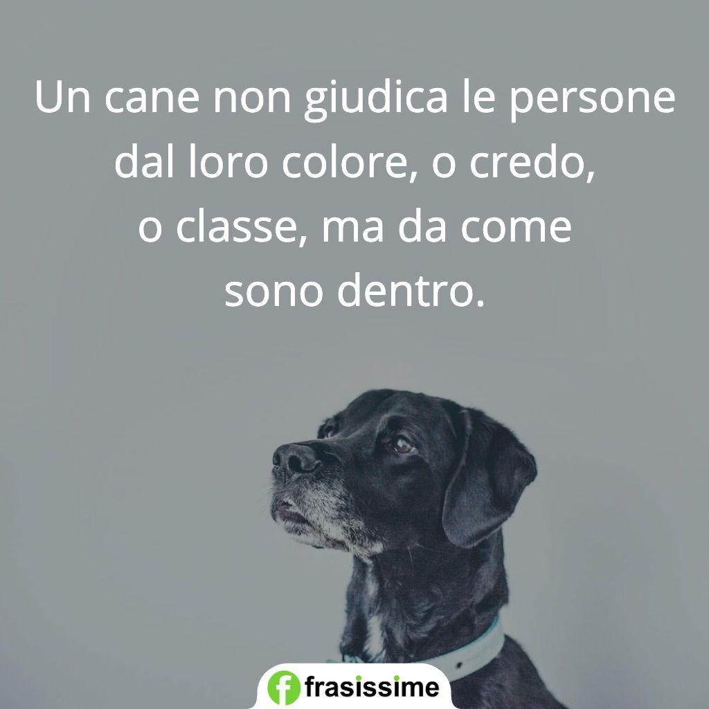 Frasi Sui Cani Da Tatuare.Frasi Sui Cani In Inglese Con Traduzione I 50 Aforismi Piu Belli